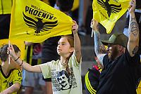 Phoenix fans during the A-League football match between Wellington Phoenix and Brisbane Roar at Westpac Stadium in Wellington, New Zealand on Saturday, 23 November 2019. Photo: Dave Lintott / lintottphoto.co.nz