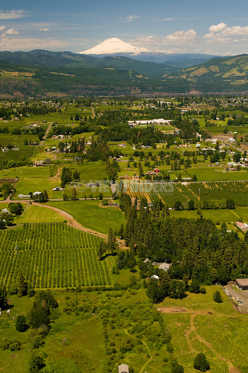 Aerial View of Hood River Farmland, Oregon