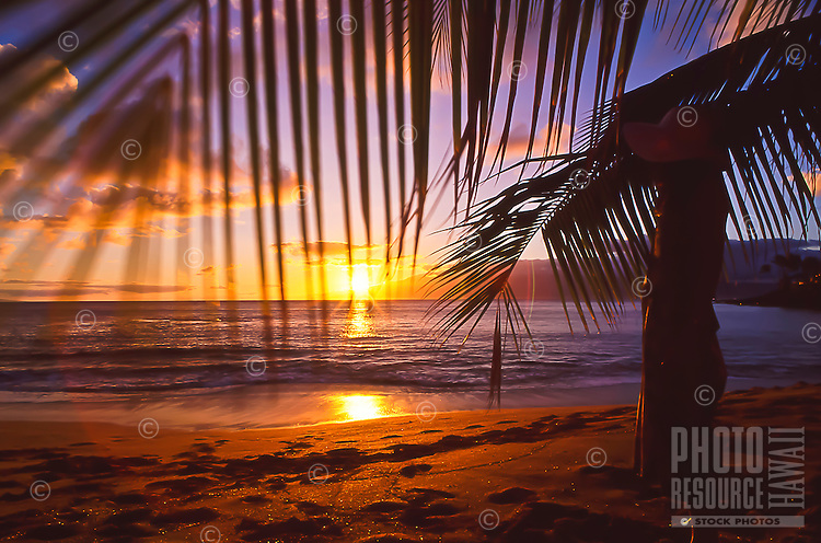 A woman in silhouette looks out at the sunset over the island of Moloka'i, seen from a beach at Napili Bay, Maui.