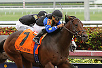 January 24, 2015:  #7 Barbados with jockey Luis Saez on board duels with X Y Jet with Edgard Zayas up to win the $150K Hutcheson  G3 at  Gulfstream Park in Hallandale Beach, Florida. Liz Lamont/ESW/CSM