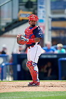 Reading Fightin Phils catcher Deivi Grullon (17) looks into the dugout during the first game of a doubleheader against the Portland Sea Dogs on May 15, 2018 at FirstEnergy Stadium in Reading, Pennsylvania.  Portland defeated Reading 8-4.  (Mike Janes/Four Seam Images)
