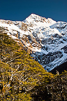 Mt. Rolleston - Arthur's Pass NP, Canterbury, New Zealand