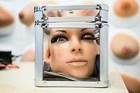 A head of a 'Real Doll' lies in a box at the San Marcos headquarters of Real Dolls. The Real Doll is a high-end sex doll created by Matt McMullen. Mr McMullen is now trying to combine different technologies to make a sex robot. He is experimenting with Artificial Intelligence, Virtual Reality and Animatronics.