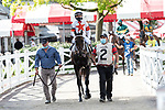 August 29, 2020: Yaupon #2, ridden by Joel Rosario and trained by  Steve Asmussen  wins the Grade 2 Amsterdam  Saratoga Race Course in Saratoga Springs, New York. Rob Simmons/Eclipse Sportswire/CSM