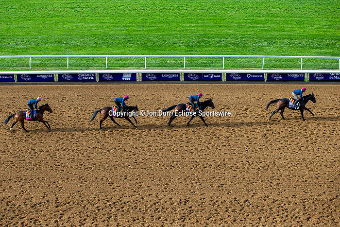 November 5, 2020: The Aidan O'Brien group of trainees exercises at Keeneland Racetrack in Lexington, Kentucky on November 5, 2020. Jon Durr/Eclipse Sportswire/Breeders Cup