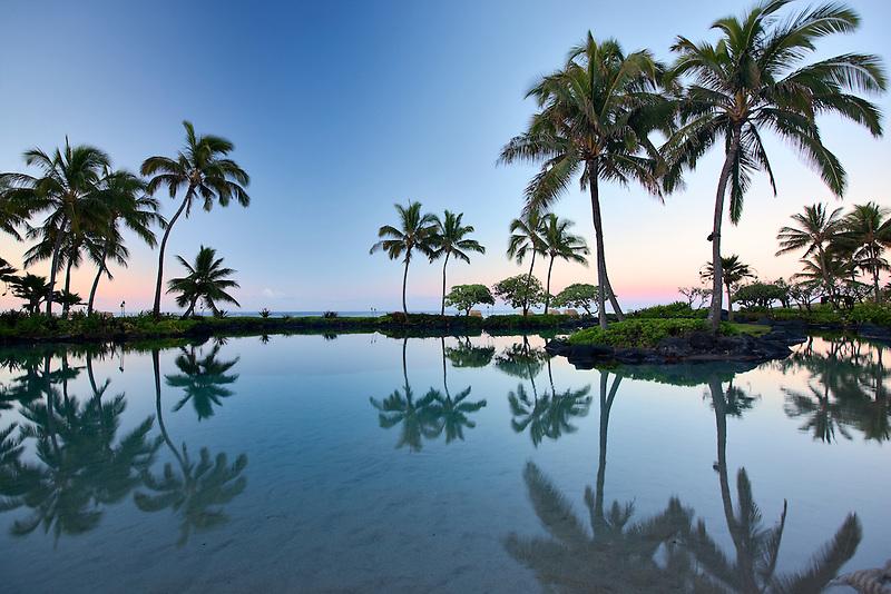 Pond reflecting palm trees. Grand Hyatt, Kauai, Hawaii