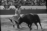 Corrida aux Arènes du Soleil d'Or (quartier des Arènes). 9 mai 1971. Scène de tauromachie. Antonio Ordonez effectue une passe de muleta avec le taureau