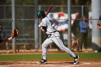 Dartmouth Big Green Trevor Johnson (36) avoids an inside pitch during a game against the Omaha Mavericks on February 23, 2020 at North Charlotte Regional Park in Port Charlotte, Florida.  Dartmouth defeated Omaha 8-1.  (Mike Janes/Four Seam Images)