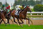 TORONT,CANADA-SEP 15: Decorated Invader #2,ridden by Irad Ortiz jr,wins the Summer Stakes at Woodbine Race Track on September 15,2019 in Toronto,Ontario,Canada. Kaz Ishida/Eclipse Sportswire/CSM