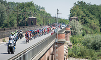 peloton crossing the River Po<br /> <br /> 'La Primavera' (Spring) in summer!<br /> 111st Milano-Sanremo 2020 (1.UWT)<br /> 1 day race from Milano to Sanremo (305km)<br /> <br /> the postponed edition > exceptionally held in summer because of the Covid-19 pandemic calendar reshuffle
