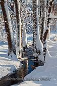 Marek, CHRISTMAS LANDSCAPES, WEIHNACHTEN WINTERLANDSCHAFTEN, NAVIDAD PAISAJES DE INVIERNO, photos+++++,PLMP01055Z,#xl#