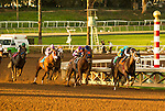 ARCADIA, CA DECEMBER 26 : # 2 Mind Your Biscuits, ridden by Joel Rosario, wins the Malibu Stakes (Grade l) at Santa Anita Park in Arcadia, CA on December 26, 2016.(Photo by Casey Phillips/Eclipse Sportswire/Getty Images)