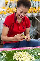 Bangkok, Thailand.  Pak Khlong Market (Flower Market).  Young Woman Stringing Jasmine Blossoms.