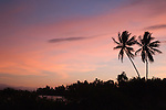 Alotau, Milne Bay, Papua New Guinea; sunset and palm trees, viewed from the shuttle bus, while traveling between the airport and the boat to Tawali Resort , Copyright © Matthew Meier, matthewmeierphoto.com