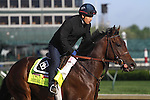 May 1, 2014: Medal Count gallops in preparation for the Kentucky Derby at Churchill Downs in Louisville, KY. Zoe Metz/ESW/CSM