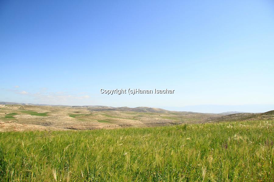 Landscape nearTell el-Ful, site of biblical Gibeah