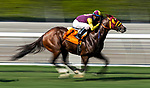 September 3, 2020:  Big Runnuer with Juan Hernandez aboard wins the Eddie D Stakes at Santa Anita Park, in Arcadia, California on September 25, 2020.  Evers/Eclipse Sportswire/CSM