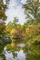 Japanese Gardens, Fort Worth Botanical Gardens