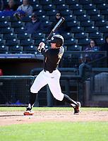 Tyler Malone - 2019 - Oregon State Beavers (Bill Mitchell)