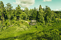 Family hiking in the Vänga Mosse Naturreservat, West Sweden, Sweden - Västsverige, Sverige