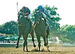 July 4, 2015 : Effinex (blue cap), ridden Junior Alvarado, outdoes Tonalist, ridden by John Velazquez, to win the Suburban Handicap on Stars and Stripes Day at belmont Park in Elmont, New York. Scott Serio/ESW/CSM