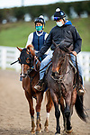 November 1, 2020: Cowan, trained by trainer Steven M. Asmussen, exercises in preparation for the Breeders' Cup Juvenile Turf Sprint at at Keeneland Racetrack in Lexington, Kentucky on November 1, 2020. Alex Evers/Eclipse Sportswire/Breeders Cup /CSM