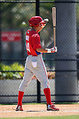 March 30, 2010:  Luis Unda (34) of the Philadelphia Phillies organization during Spring Training at the Carpenter Complex in Clearwater, FL.  Photo By Mike Janes/Four Seam Images