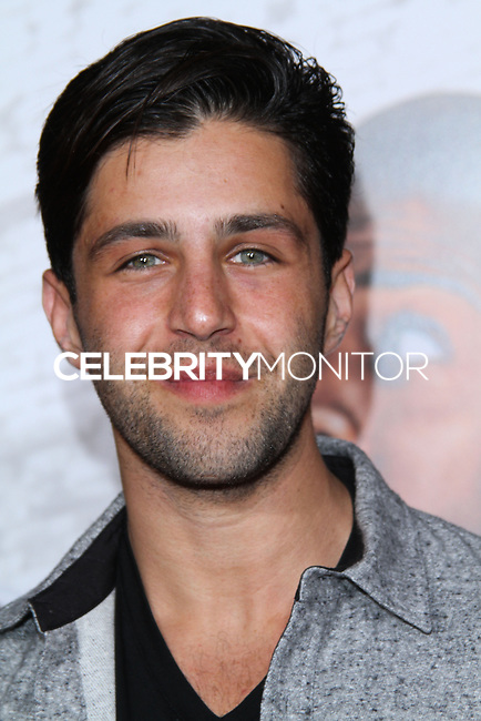 """HOLLYWOOD, CA - JANUARY 13: Josh Peck at the Los Angeles Premiere Of Universal Pictures' """"Ride Along"""" held at the TCL Chinese Theatre on January 13, 2014 in Hollywood, California. (Photo by David Acosta/Celebrity Monitor)"""