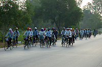 WORKERS on Bicyles, EARLY MORNING ON THE ROAD to Siam Reap, traveling from the province every morning for work at Hotels and other places,seeking employment,Cambodia