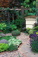 Keeping bees in hive in herb garden with garden path and fence
