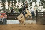 SEBRA - Windsor, VA - 9.15.2017 - Bulls & Action