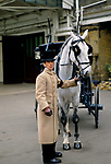 Coachman training horses for royal carriages Royal Mews Buckingham Palace, London 1991 1990s London UK