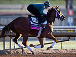 October 28, 2019 : Breeders' Cup Juvenile Fillies Turf entrant Sweet Melania, trained by Todd A. Pletcher, exercises in preparation for the Breeders' Cup World Championships at Santa Anita Park in Arcadia, California on October 28, 2019. Carolyn Simancik/Eclipse Sportswire/Breeders' Cup/CSM