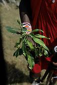 Lolgorian, Kenya. Siria Maasai. Medicinal plants: 'Eutuleli'; 'Osocomoy'; boiled roots and leaves for Foot & Mouth disease. Teclea sp. or Vepris sp.