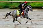 September 2, 2020: Enforceable exercises as horses prepare for the 2020 Kentucky Derby and Kentucky Oaks at Churchill Downs in Louisville, Kentucky. The race is being run without fans due to the coronavirus pandemic that has gripped the world and nation for much of the year. Scott Serio/Eclipse Sportswire/CSM