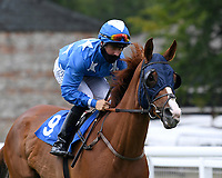 By My Side ridden by Cieren Fallon goes down to the start of  The British Stallion Studs EBF Odstock Fillies' Handicap during Horse Racing at Salisbury Racecourse on 13th August 2020