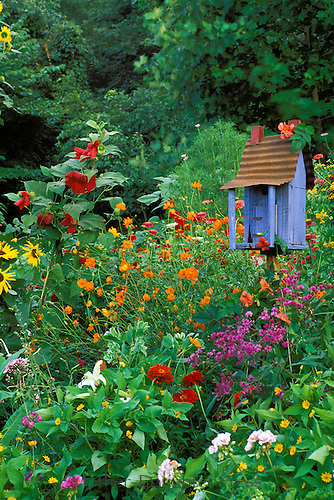 Painted birdhouse in gaudy garden of  mixed blooming flowers, Midwest USA