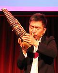 Wu Tong at 2012 China Institute Gala 5-11-12