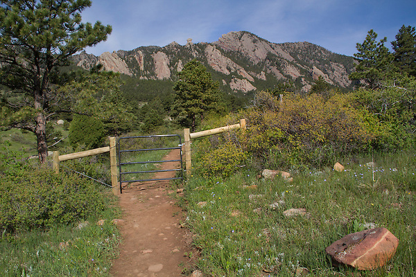 Foothills in summer, Boulder, Colorado .  John leads private photo tours in Boulder and throughout Colorado. Year-round.