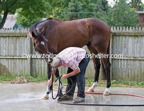 Hidden Trail nibbles Robert Cutler during a bath.