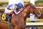 Lea with jockey Luis Saez on board, wins the Hal's Hope (G3) at Gulfstream Park, Hallandale Beach, Florida 01-11-2014