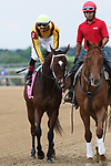HOT SPRINGS, AR - April 14: Terra Promessa #1 with jockey Jose Ortiz aboard walks in the post parade prior to the Apple Blossom Handicap at Oaklawn Park on April 14, 2017 in Hot Springs, AR. (Photo by Ciara Bowen/Eclipse Sportswire/Getty Images)