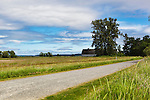 Gravel road leading to Barn in Field, Nisqually National Wildlife Refuge, Washington State.  Blue cloudy skies, tall grass in bird sanctuary.
