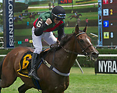 August 24 - NY Turf Writers Cup - Diplomat