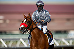 AUG 08: Bodhicitta (GB) with Flavien Prat wins the Yellow Ribbon Stakes at Del Mar Thoroughbred Club in Del Mar, California on August 02, 2020. Evers/Eclipse Sportswire/CSM