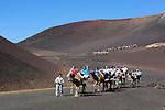 Spain, Canary Island, Lanzarote, near Yaiza: Parque Nacional de Timanfaya (Timanfaya National Park) -  Dromedary rides up the slopes of Timanfaya mountain | Spanien, Kanarische Inseln, Lanzarote, bei Yaiza: Dromedarreiten im Timanfaya Nationalpark (Parque Nacional de Timanfaya)