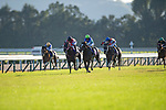 KYOTO,JAPAN-OCT 25: Aristoteles (yellow cap) was about to overtake Contrail (black cap)at last stretch in the Kikuka Sho at Kyoto Racecourse on October 25,2020 in Kyoto,Kyoto,Japan. Kaz Ishida/Eclipse Sportswire/CSM