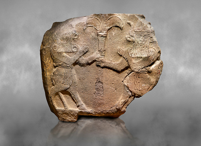 Hittite monumental relief sculpted orthostat stone panel from Water Gate Basalt, Karkamıs, (Kargamıs), Carchemish (Karkemish), 900-700 B.C.  Anatolian Civilisations Museum, Ankara, Turkey.<br /> <br /> Two bull-men holding the trunk of the tree in the middle. The faces of the figures, having tufts in both temples over the chain, have been depicted from the front direction. The horned figures with bull-like ears and legs have human bodies. <br /> <br /> On a grey art background.