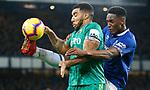 10.12.2018 Everton v Watford
