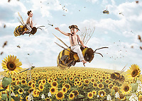 whimsical photography, bren slade, once upon a pix, bees, flying, composites